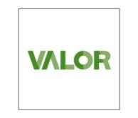 52_valor_logo
