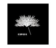 54_cepese_logo